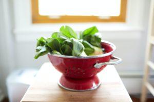 Rohkost Küchenmaschine mit Salat
